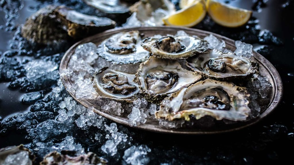 oysters on day tour from dubrovnik